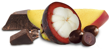 Brookside Dark Chocolate Mango & Mangosteen Flavors 7 oz (198g)
