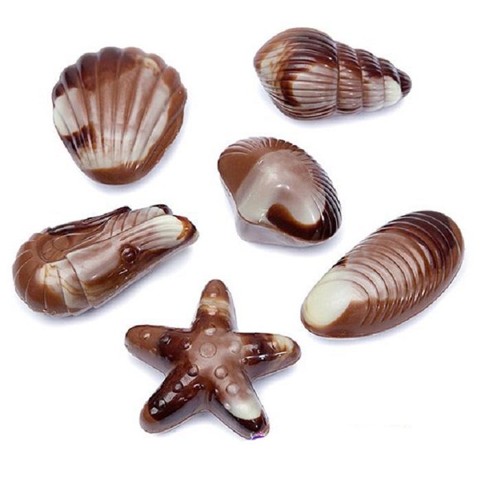 Belgian Creamy Vanilla Seashells 195G