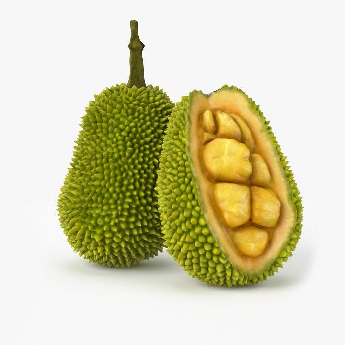 Alor Freeze Dried Jackfruit 50G