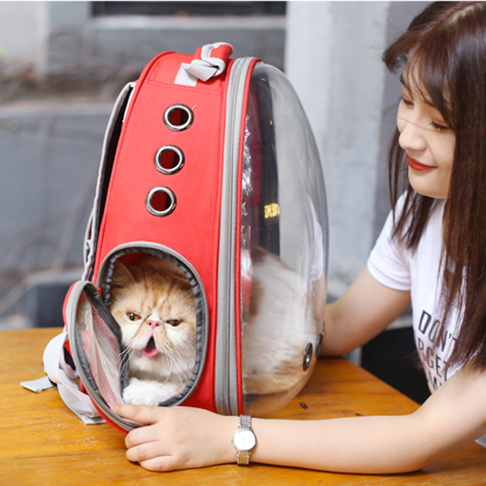 Transparent Cover Full Screen View Astronaut Capsule Travel Pet Backpack Bag
