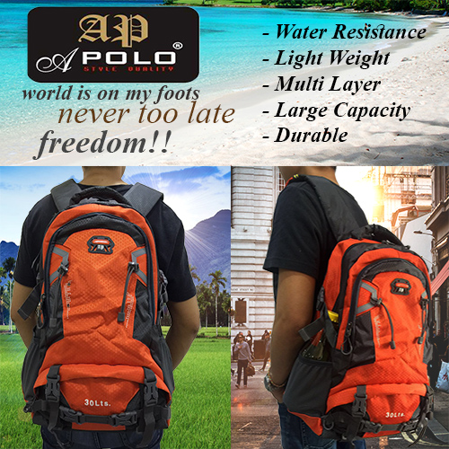 APOLO 12430HS 30L Travel And Outdoor Backpack